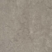 Линолеум натуральный Forbo Marmoleum Real Serene Grey 3146 2 мм 2х32 м